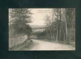 Foret De Carnelle (95) - La Descente De La Cavée ( Ed. Frémont Beaumont Sur Oise ) - France