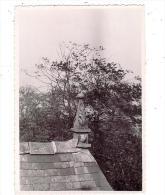 LION-SUR-MER/14/CHATEAU 1951/Réf:1497 1498 - Photography