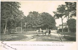 ESSONNE 91.MONTGERON LA GRILLE D HONNEUR DU CHATEAU ET LA RUE DES BOIS - Montgeron