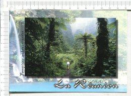 ILE De LA REUNION -  ST BENOIT  -  Grand Etang - Saint Benoît
