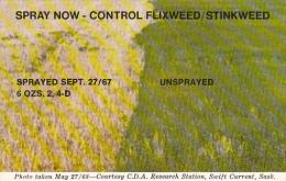 Canada Shell Research Farm Swift Current Saskatchewan