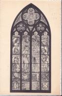 DENDERLEEUW : St Amanduskerk - Denderleeuw