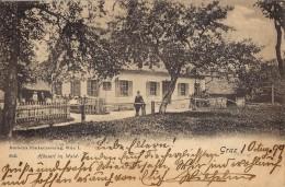 A - GRAZ - Häuserl Im Wald - 1899 - Graz