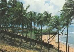 CPM Brésil - Natal - Praia De Pirangi Do Norte - Natal