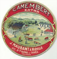 étiquette De Fromage:   Camembert  :  Hiéville  Par  Saint  Pierre  Sur  Dives   , Calvados - Formaggio