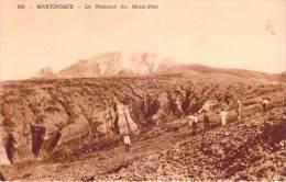 Martinique - Le Sommet Du Mont-Pelé - Other