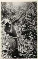 Cameroun - Ref 286- Compagnie Zoologique De Yaoundé - Zoo -carte Bon Etat - - Cameroun