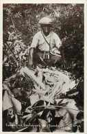 Cameroun - Ref 287- Compagnie Zoologique De Yaoundé - Zoo -carte Bon Etat - - Cameroun
