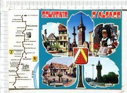 ALSACE  -  Souvenir   -  Circuit Et Multi Vues - Alsace