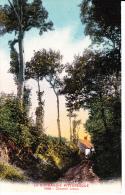 NORMANDIE ,chemin Creux, Ferme, Coucher De Soleil - Fermes