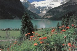 BT16382  Banff National Park Lake Louise  2 Scans - Banff