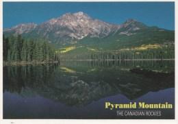 BT16550 Pyramid Mountain Jasper  2 Scans - Jasper