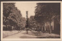 83----AUPS Avenue Georges Clemenceau---cpsm Pf - Aups