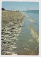 PECHE - PECHEURS SUR LA PLAGE - Ed. MICHEL MARCOU - 17 - Fishing
