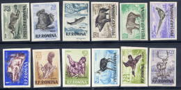 ROMANIA 1956 Fauna Imperforate Set Of 12 MNH / **.  Michel 1614-25 - Unused Stamps