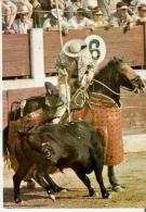 CALENDARIO DEL AÑO 1972 DE LOS TOROS (CALENDRIER-CALENDAR) TORO-BULL-PICADOR - Tamaño Pequeño : 1971-80