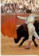 CALENDARIO DEL AÑO 1972 DE LOS TOROS (CALENDRIER-CALENDAR) TORO-BULL-TORERO - Tamaño Pequeño : 1971-80