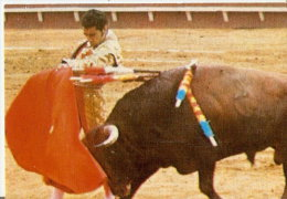 CALENDARIO DEL AÑO 1972 DE LOS TOROS (CALENDRIER-CALENDAR) TORO-BULL-TORERO - Calendarios