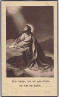 Doodsprentje Van Marie POOT, Echtg. Van Pierre-Joseph VAN MUYLDER, °Hougaerde 20-9-1856 / +Tienen 20-12-1940. - Religion & Esotérisme