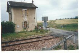 Photographie Amateur Ligne SNCF De Coulomiers ; Passage à Niveau N) 38 Le Buisson ( 77 ) Bon état - Eisenbahnen