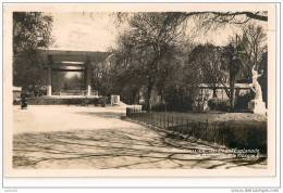 CPA - 34 - Montpellier - Jardin De L´Esplanade - Divisé-circulé - En Bon état - 1937 - - Montpellier