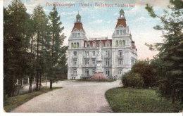 Allemagne-Bad Wildungen (Kassel -Hesse)-1910-Hotel U. Badehaus Fürstenhof-Verlag C.Fischer & Co Eltville A. Rhein - Bad Wildungen