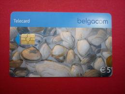 Phonecard Shelpjes Used - Met Chip