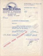 Brief 1950 SINT-NIKLAAS-WAES - WAESLANDIA - Groothandel In Voedingswaren Koffie- En Peeën Branderij - Zonder Classificatie