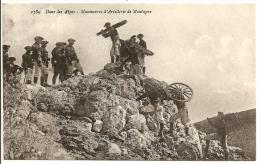 Dans Les Alpes - Manoeuvres D'Artillerie De Montagne - Manöver