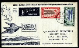 A2409) Neuseeland New Zealand Cover 11/19/1948 First Flight - Neuseeland