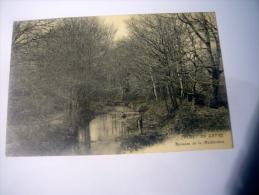 Forêt Du Gavre Ruisseau De La Maillardais - Le Gavre