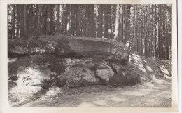 Gschwend, Ostalb, Schiller-Stein, Foto 1932 - Orte