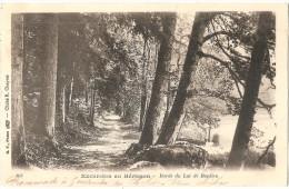 Dépt 39 - BONLIEU - Excursion Au Hérisson - Bords Du Lac De Bonlieu - Autres Communes