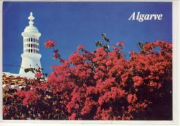 ALGARVE - Panorama;   Stamp:  NATO - Faro