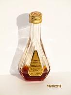 Mignonnette  Cognac Bisquit  Vsop 3cl - Miniatures