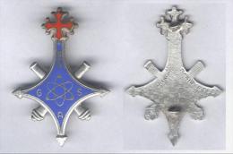 Insigne Du 620e Groupe Des Armes Spéciales - Armée De Terre