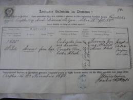 Old Paper -Slovakia - Csejte   ÄŒachtice  - Anna - Joannes Andreska - Elisabetha Vranka  1871  DC9.2 - Birth & Baptism