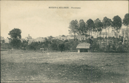 95 BOISSY L'AILLERIE / Panorama / - Boissy-l'Aillerie
