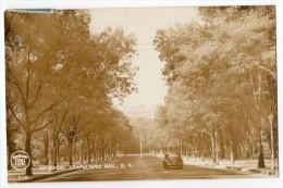 Mexico Tarjeta Postal Foto Entrada Chapultepec Auto Car Real Photo  Vintage Original Postcard Cpa Ak (W3_2933) - México