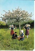 NORMANDIE PITTORESQUE, Groupe Folklorique Les Goublins, Cherbourg, Sous Les Pommiers, , Panier, Coiffe, Chapeau, Châle, - Costumes