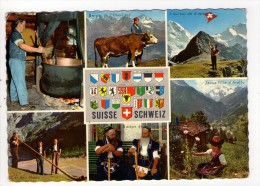 CP 10*15/AC359/SUISSE MULTIVUES BLASONS 1969 - Switzerland