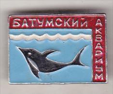 USSR Georgia Old Pin Badge  - Batumi Aquarium - Animals
