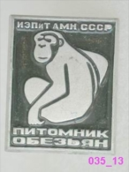 Animals: Monkey, Ape (apery The Russia Academy Of Sciences) / Old Soviet Badge _035_an3593 - Animals