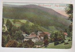 CPA BAD RIPPOLDSAU En 1913!! (voir Timbre) - Bad Rippoldsau - Schapbach