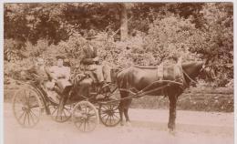 SUPERBE VIEILLE  PHOTO  8,50x13,5 CM . - Caleche - Carosse - Attelage - RESTEIGNE - Tellin