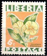 LIBERIA 1955 Flowers - 6c Callichilia Stenosepala  MH - Liberia
