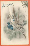 FEL221, Joyeux Noël, Oiseaux,,  Circulée 1912 - Vogels