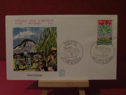 FDC, Région, Martinique - 972 Fort De France - 29.1.1977 - 1er Jour - - FDC