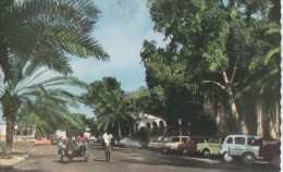 DJIBOUTI ( Le Centre ) - Somalie