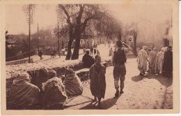 14 Anciennes Cartes Dont 11 Très Animées. Algérie (française) Profonde,  D´autrefois / 1935 Cf Les Lieux Dans Descriptif - Scènes & Types